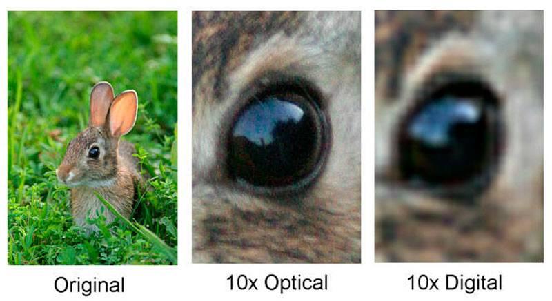Comparativa entre zoom óptico y digital